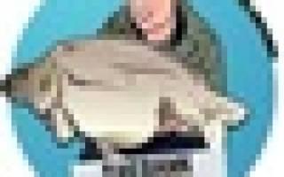 Подставка Рыболов «Rod Pod» — обзор и отзывы