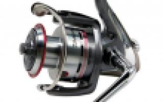 Безынерционная катушка Daiwa Lexa 2500 SH — обзор и отзывы