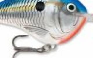 Мультипликаторные — обзор и отзывы