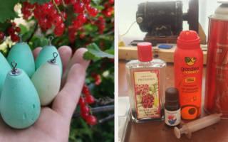 «Дальнобойные яйчишки», или Поплавки для сплетни #СВОИМИКРИВЫМИ