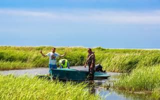 Ловить сетями разрешат только членам общества рыболовов