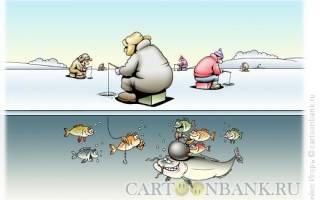 140 рыбаков готовы зарубиться не на шутку на просторах Оби
