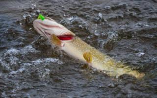 Спиннинг Рыболов Навахо Лайт Джиг (213 2-8) — обзор и отзывы