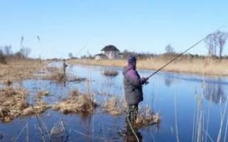 Рыбалка в марте и не только…