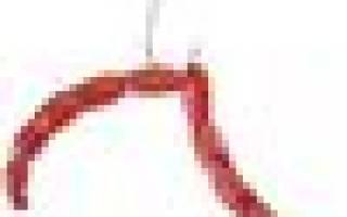 Искусственный мотыль Berkley Powerbait Micro Blood Worms — обзор и отзывы