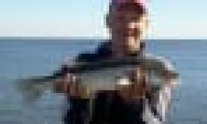 Фидерное удилище Korum 3-Piece Feeder Rod 13′ до 150 — обзор и отзывы