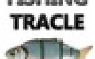 Мультипликаторные Akara — обзор и отзывы