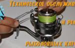 Безынерционная катушка Shimano Stella 4000 — обзор и отзывы