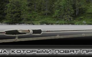 Спиннинг CD Rods Rapid Сoncept 9'0»M (275 7-28) — обзор и отзывы